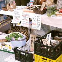 地元産の野菜を販売している~地産地消のしずく~